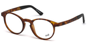 Web Eyewear WE5186 053 havanna blond