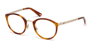 Web Eyewear WE5193 032
