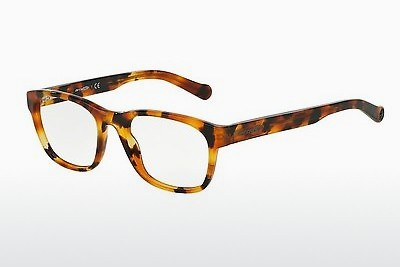 Eyewear Arnette SELECTOR (AN7081 1141) - Brown, Havanna