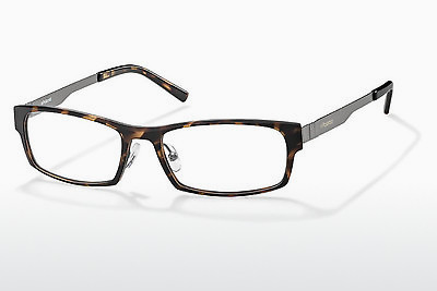 Eyewear Polaroid PLD 1P 006 3Z2 - Brown, Havanna