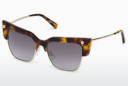 Ophthalmic Glasses Dsquared DQ0279 52C - Brown, Havanna