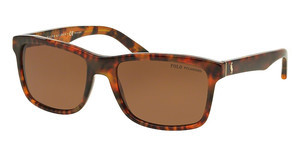 Polo PH4098 501783 POLAR BROWNSHINY JERRY TORTOISE