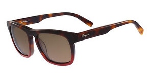 Salvatore Ferragamo SF789S 207 HAVANA RED