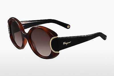 Ophthalmic Glasses Salvatore Ferragamo SF811SL SIGNATURE 233